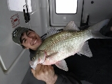 white bass caught by Dennis  Leppell