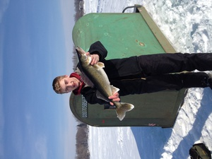 Walleye caught by Cole Daleiden