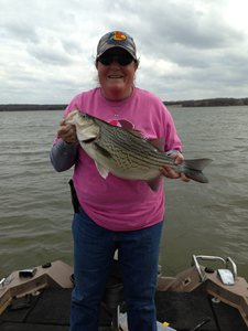 Hybrid Bass caught by Tish Sprayberry