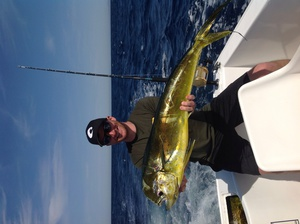 Mahi-mahi caught by Adam Evanoff