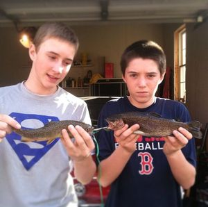 Rainbow trout caught by Nick Benis