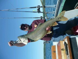 Lake trout caught by steve ohme