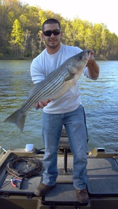 Striper caught by Brendan Howard