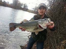 bass caught by alex pondikati