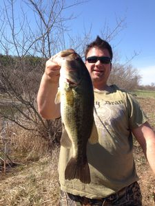 Largemouth Bass caught by Jason Gravis