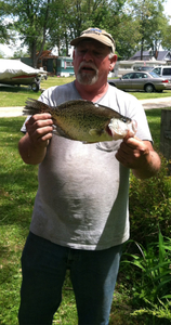 Crappie-Big Gils caught by don gambrel