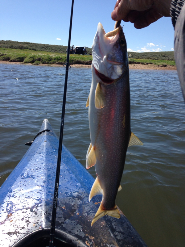 Williams fork reservoir co fishing reports map hot spots for Best places to fish in colorado