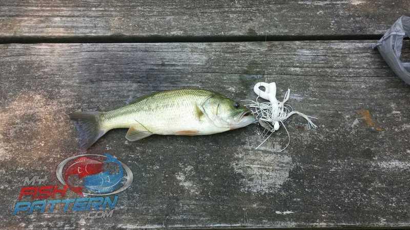 Canandaigua lake ny fishing reports map hot spots for Seneca lake fishing report