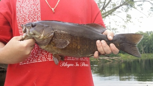 smallmouth bass caught by John  donnell