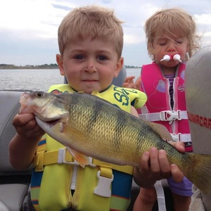 Perch caught by chris kendall