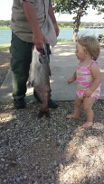 channel catfish caught by austin everest