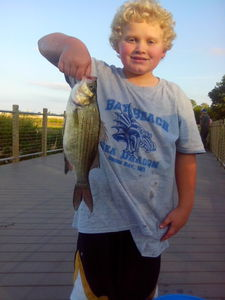 White bass caught by Stacey Plath