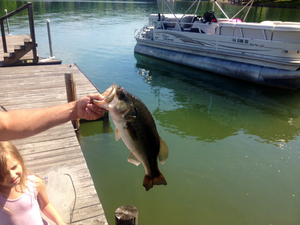 Large Mouth Bass caught by Ethan Sprouse