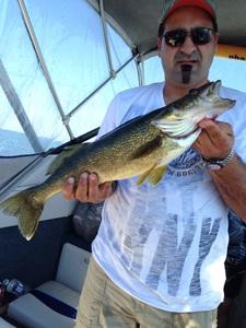 Walleye caught by Ralph Tassone