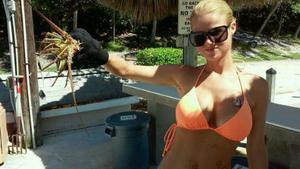 FL Spiny Lobster  caught by amber Roberts