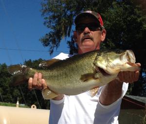 Bass  caught by Joe Burge