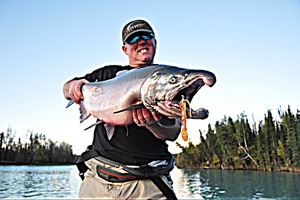 Coho Silver Salmon caught by Dennis Musgraves
