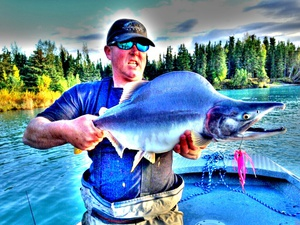 Pink Humpy Salmon caught by Dennis Musgraves