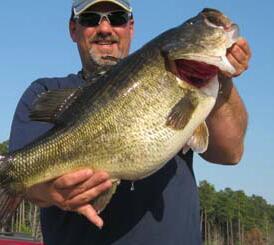 Largemouth Bass caught by Thomas Milam