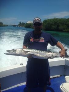 Barracuda caught by Douglas Broom