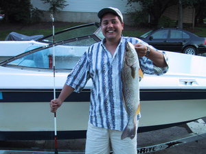 Weakfish or Sea Trout caught by Renny Barragan