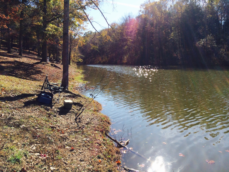 Cumberland river tn fishing reports map hot spots for Fishing lakes in tennessee