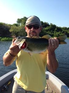 Largemouth Bass caught by David Osborne