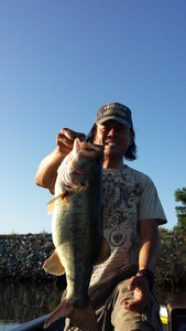 Large Mouth Bass caught by Martin Yang