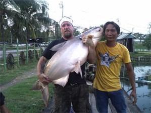 Mekong Giant Cat caught by Arthur Huttemeyer Sr.