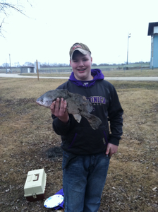 Sheepshead And Carp caught by Mark McKee