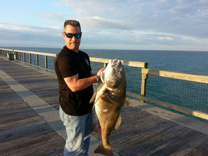 Black drum  caught by Kevin Horn Sr
