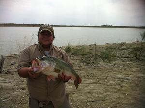 largemouth caught by jorge cavazos