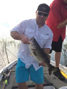 largemouth  caught by JUSTIN  BRASWELL