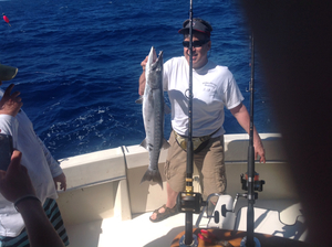 Barracuda caught by Frederic Kinkin