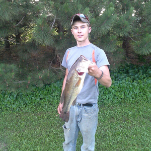 Large Mouth caught by Brad Look