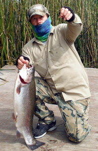 Rainbow Trout. caught by Angler  Ace