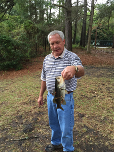 Large Mouth Bass caught by Alli Segrest