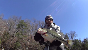 largemouth caught by Drew Mansell