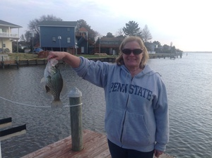Crappie caught by Frederic Kinkin