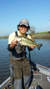 LM Bass caught by Martin Yang