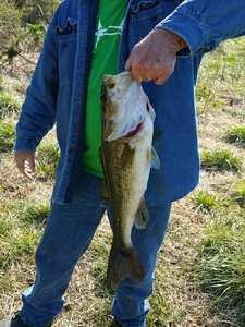 Largemouth Bass caught by Troy VonHall