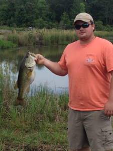 Largemouth Bass caught by Brian Strickland