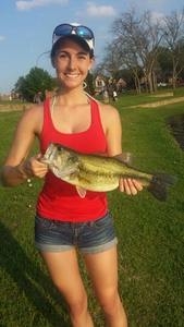 Largemouth  bass caught by Justin  Harves