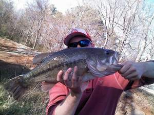 largemouth bass caught by Tyler Thornton