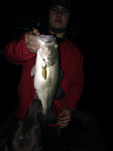 Largemouth Bass caught by Caleb  Lafleur