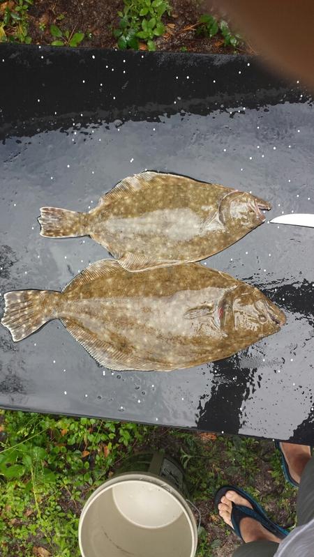 New smyrna beach fl fishing reports map hot spots for New smyrna beach fishing spots