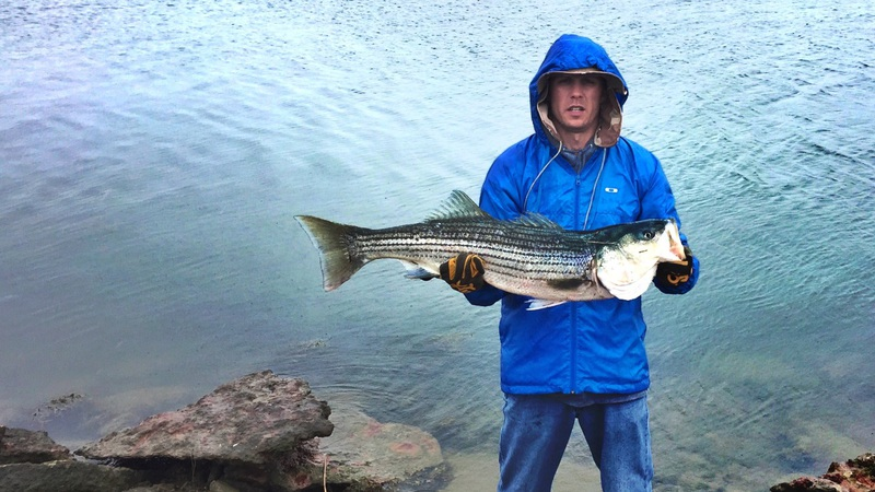 Boston harbor ma fishing reports map hot spots for Boston harbor fishing report