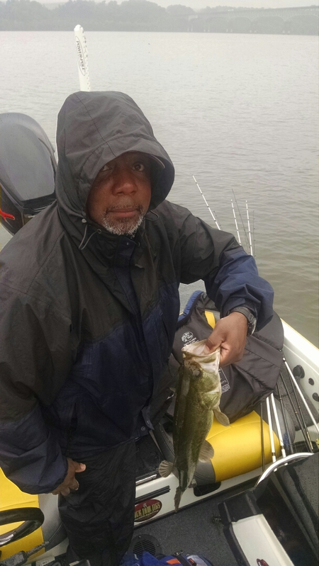 Susquehanna River Lapidum Md Fishing Reports Map Hot