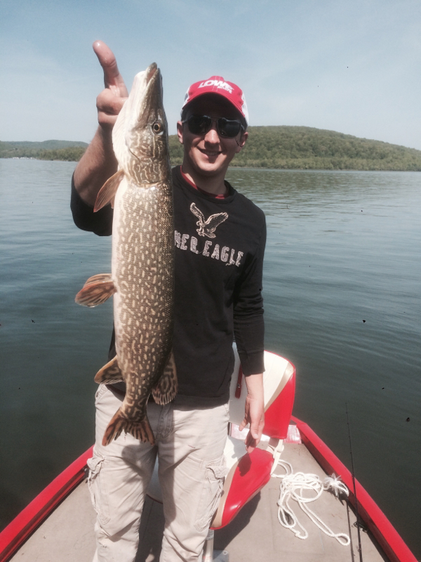 Caught a northern pike on allegheny river kinzua dam for Kinzua dam fishing