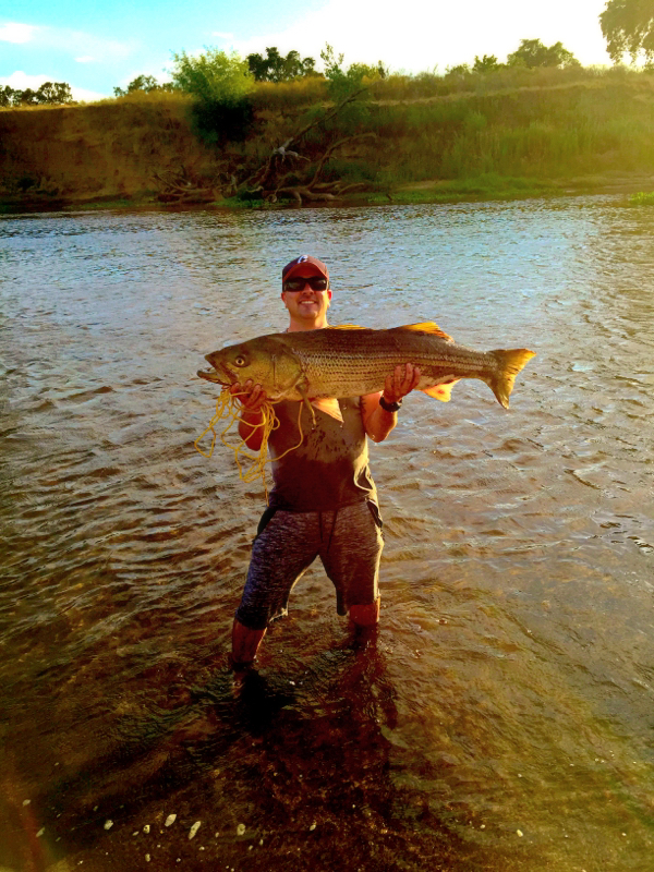 San joaquin river middle fork lower ca fishing reports for San joaquin river fishing